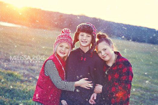 Christmas Card | Show Cows | Kansas City Photographer | Melissa Rieke Photography