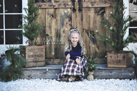 Christmas Card Picture Set Portraits Mini Session