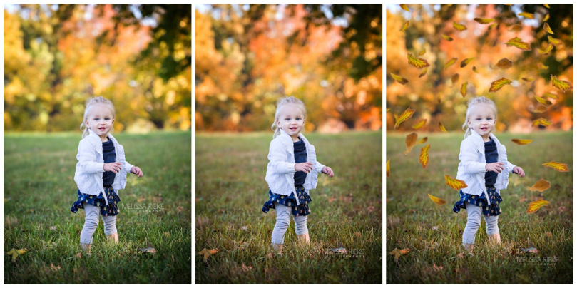 Fall Photoshop Actions Folliage Falling Leaves Enhance Adobe